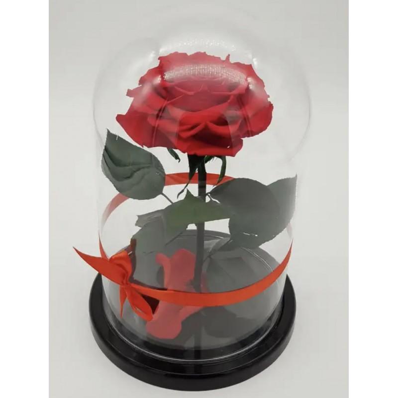 Роза в колбе ВИП