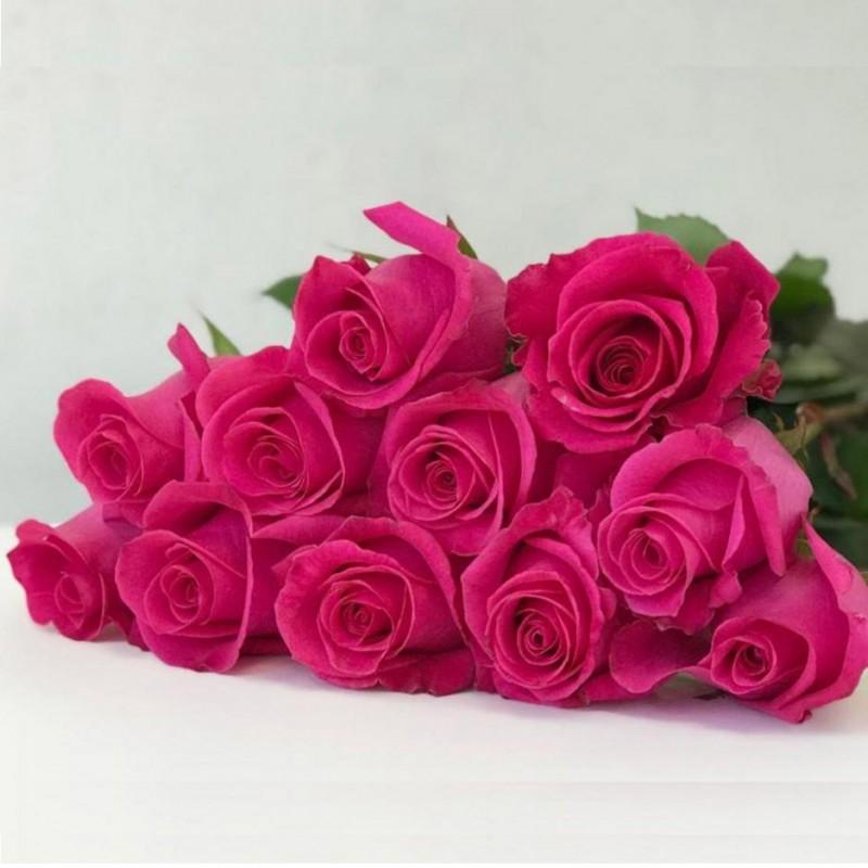Роза Pink Floid